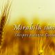 Mirabila sămânță (despre puterea Cuvântului)